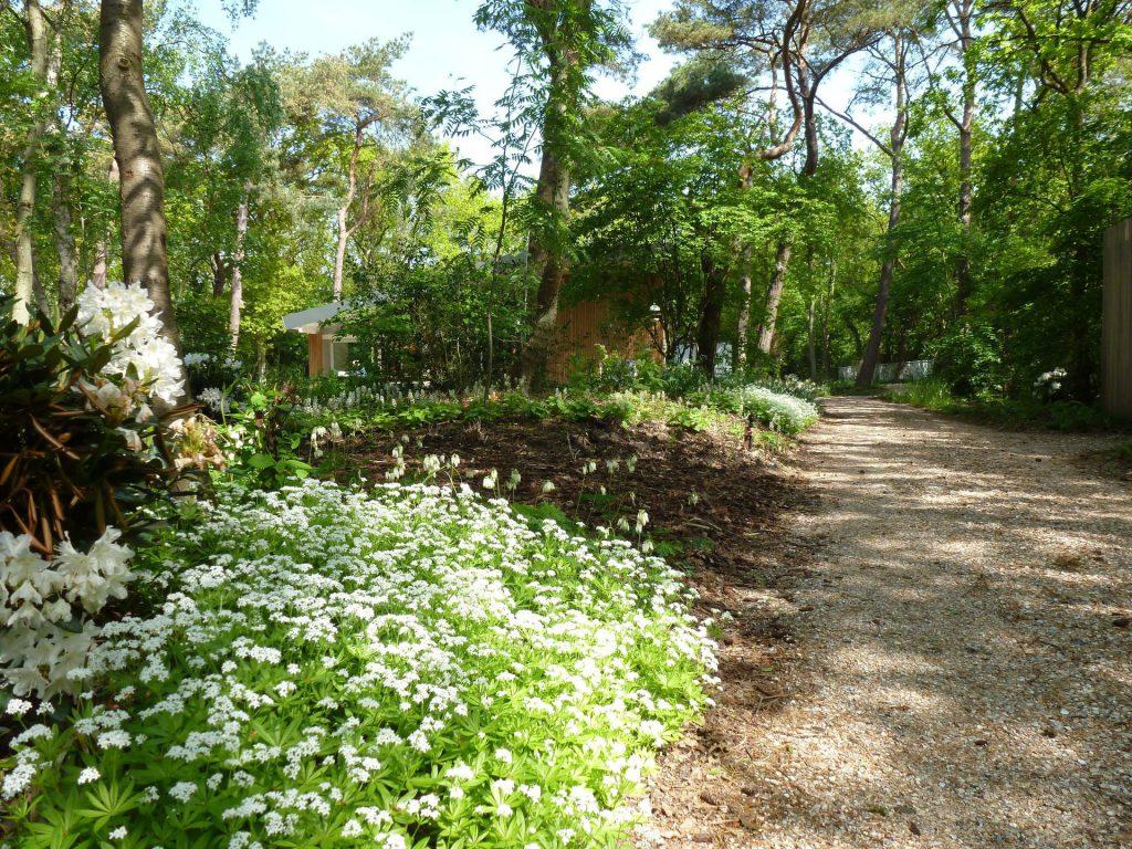 Bostuin aangelegd door Barten Exclusieve tuinen